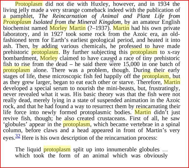 morley martin abiogenesis